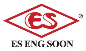 ES logo with R